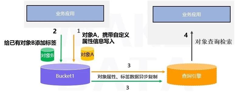81e95da3-2fdc-4dd7-b4db-219c538ed983.jpg